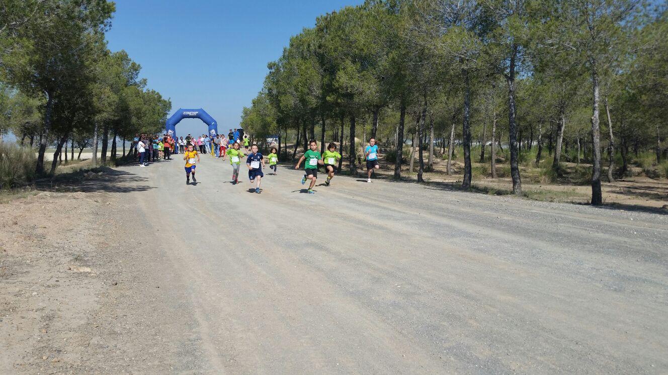 I Cross Sierra Del Molino – Celebrado Con éxito!!